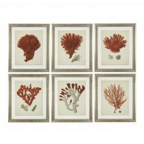 Eichholtz Coral Antique Red Set of 6 Prints