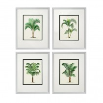 EICHHOLTZ PALMS PRINT SET OF FOUR